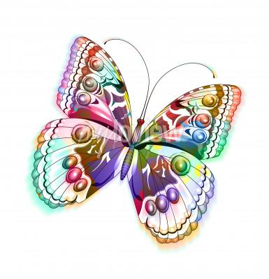 Sticker Colorful isolated butterfly
