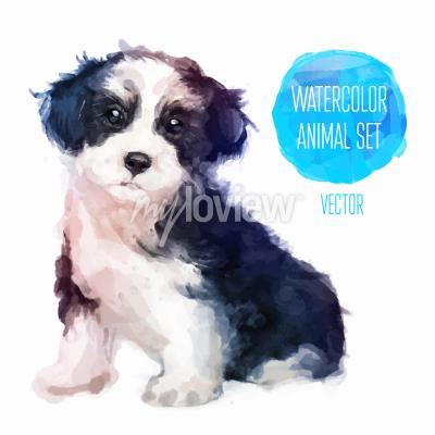 Poster Dog hand painted watercolor illustration