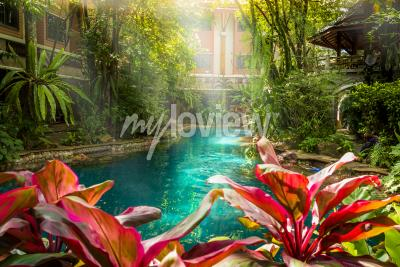 Jungle swimming pool style under trees and house background at sunshine time