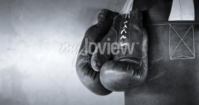 Wall mural Boxing gloves