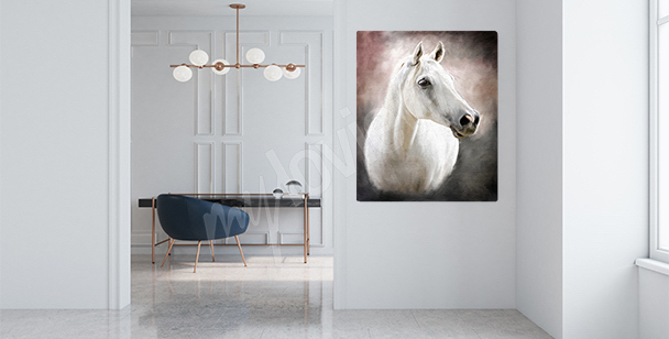 Arabian horse canvas print