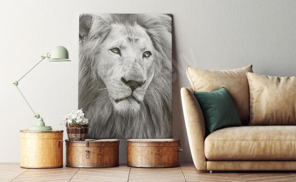 Black-and-white lion portrait canvas print