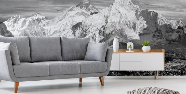 Black-and-white mountains mural