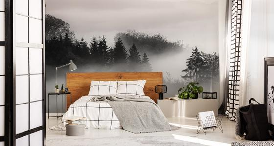 Black-and-white murals – less is more