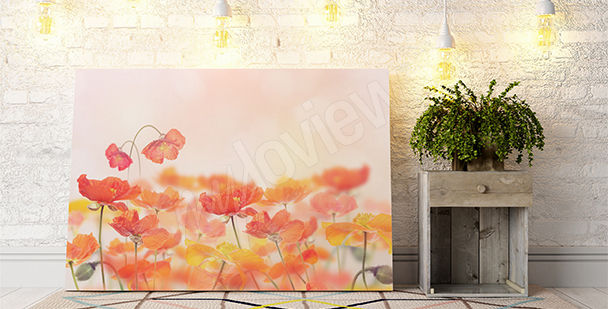 Blooming poppies canvas print