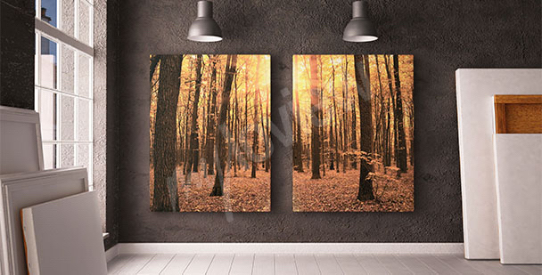 Canvas print featuring a tree in a forest