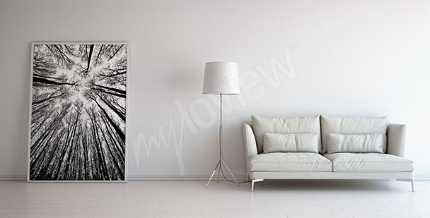 Canvas print featuring black and white trees