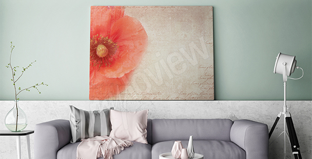 Canvas print poppy flower