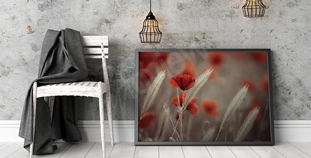 Canvas print red poppies