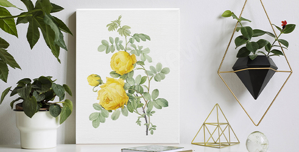 Canvas print with a floral accent