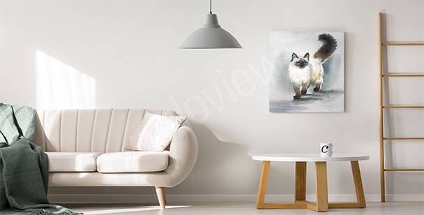 Cat canvas print for the living room