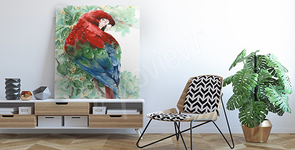 Colorful parrot canvas print