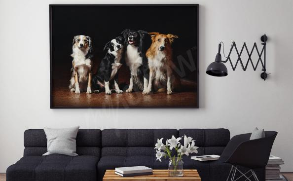 Dog canvas print to the living room