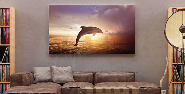 Dolphin at sunset canvas print