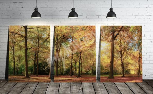 Forest landscape triptych print