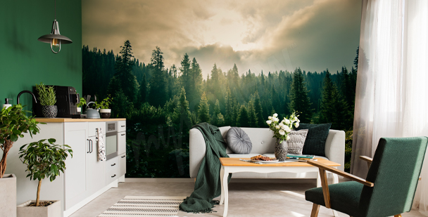 Forest nature wall mural