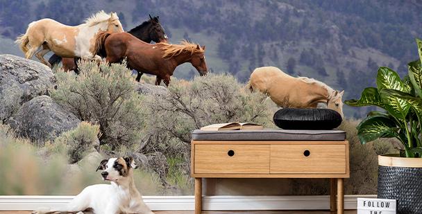 Galloping horses mural