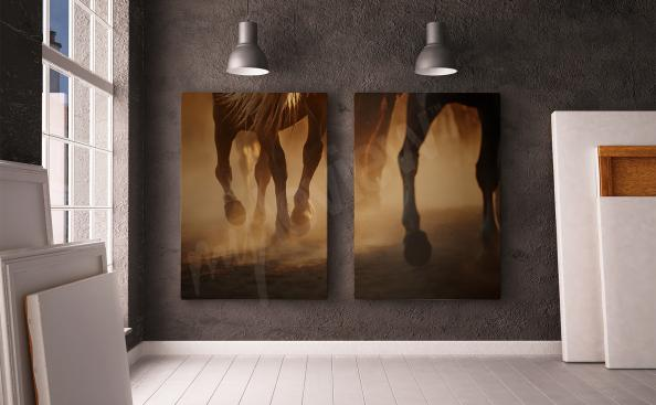 Horse diptych canvas print