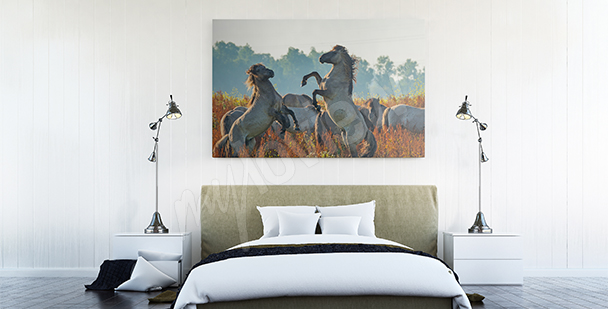 Horse meadow canvas print