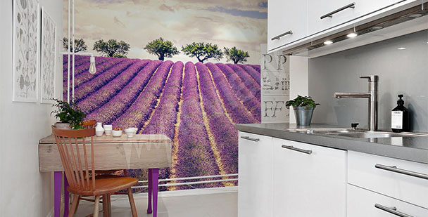 Lavender wall mural for kitchen