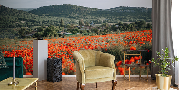 Mountain poppies wall mural