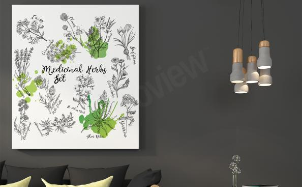 Nature canvas print herbs