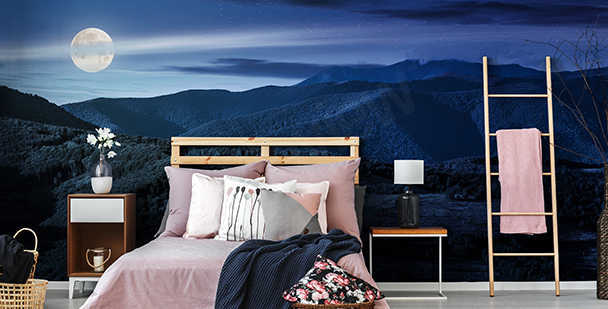 Panoramic mountainscape at night mural