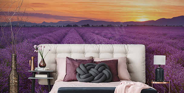 Panoramic view of Provence mural