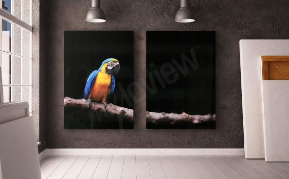 Parrot diptych canvas print
