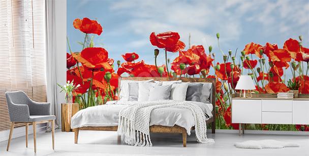 Poppies against sky mural