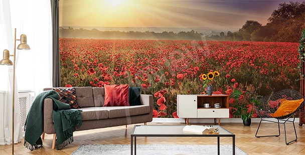 Poppy field mural