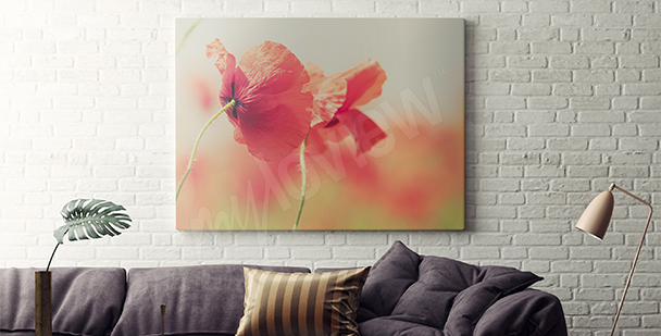 Retro canvas print poppies