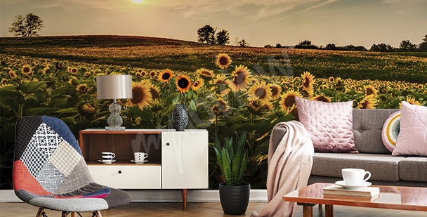 Sunflower field mural
