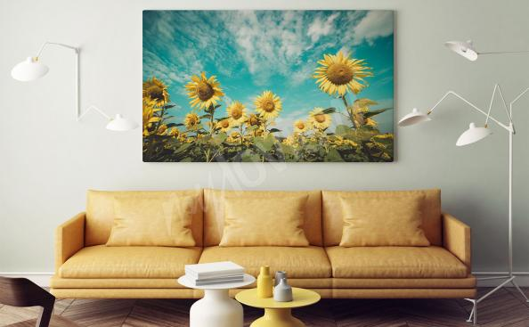 Sunflower's field canvas print
