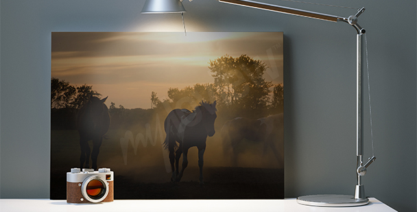 Sunset horses canvas print
