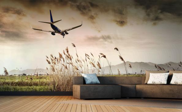 Wall mural airplane landing