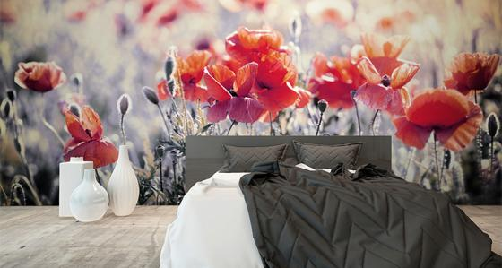 Many designs of a bedroom: bedroom murals