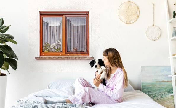 Window with a dog sticker